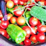 大人になって初めて感じた「野菜ってこんなに美味しいの?」