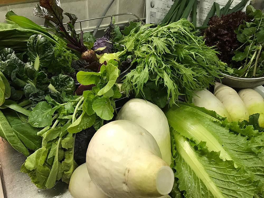 家に帰って野菜を広げてみると、改めてすごいボリューム!